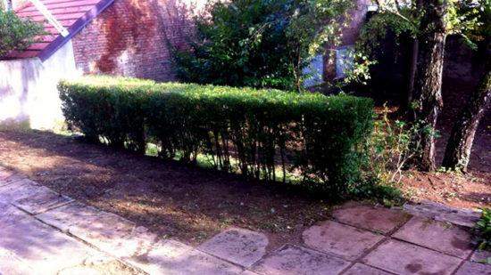 Dvorište poslije