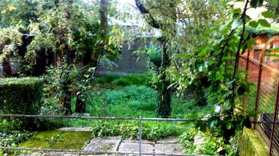 Dvorište prije